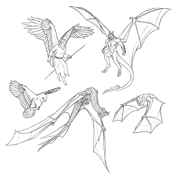 how to draw and animate wings