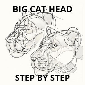 how to draw big cat head