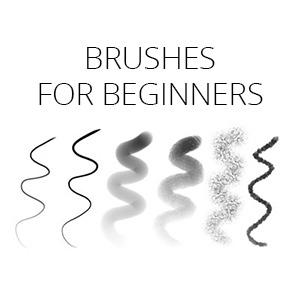 brushes for beginners