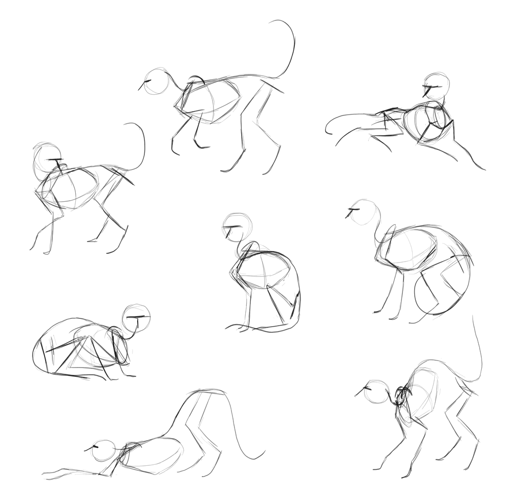 cat sketches outlines