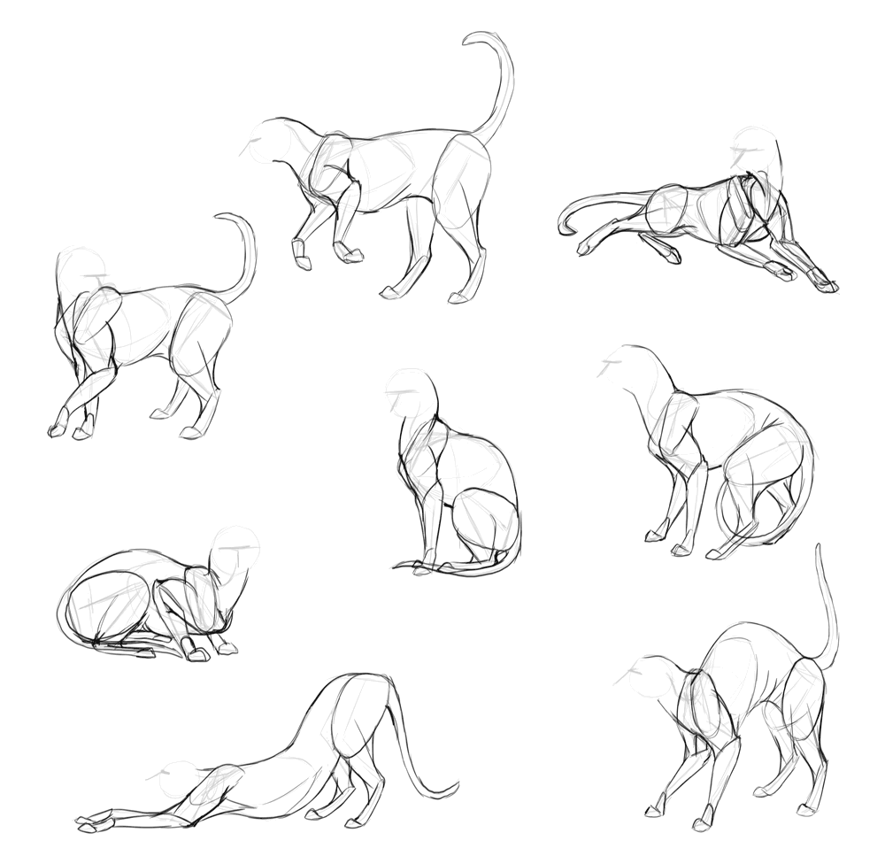 draw-cats-done-2