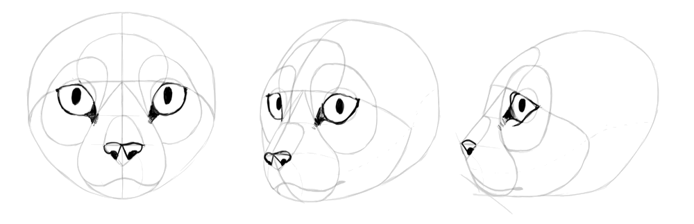 draw-cats-head-10