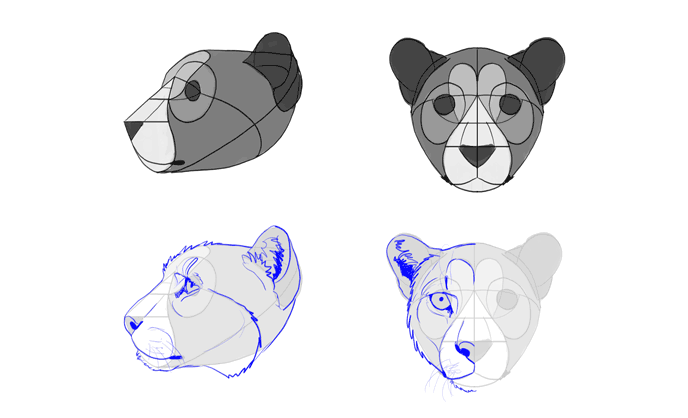 how-to-draw-big-cats-heads-cheetah