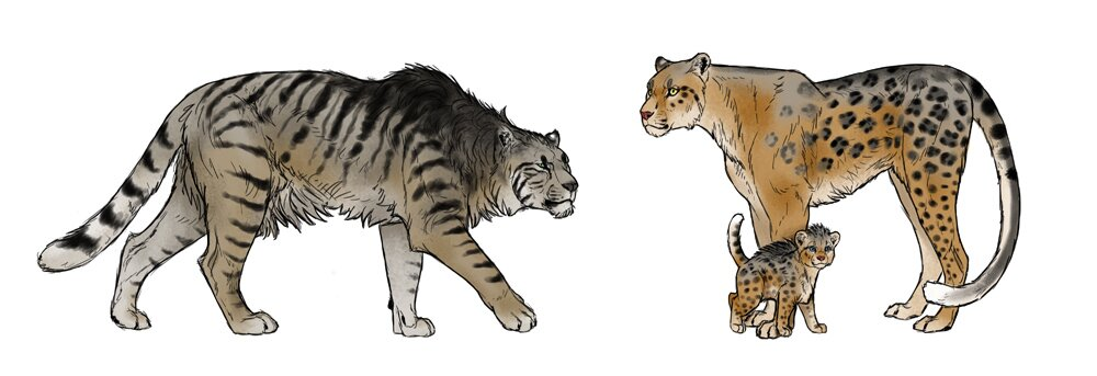 how-to-draw-big-cats-imagination
