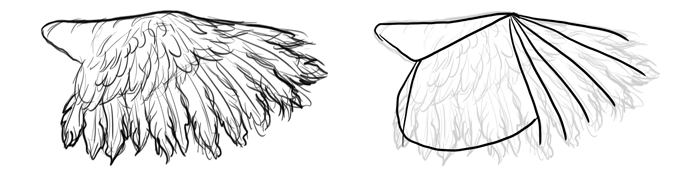 how-to-draw-birds-wings-ostrich