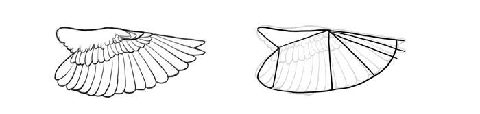 how-to-draw-birds-wings-perching