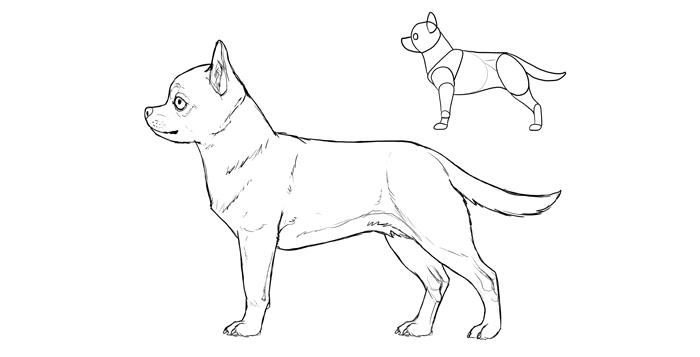 Это изображение имеет пустой атрибут alt; его имя файла - how-to-draw-dogs-breeds-chihuahua.png