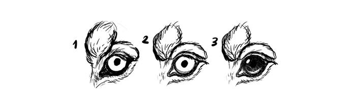 Это изображение имеет пустой атрибут alt; его имя файла - how-to-draw-dogs-eyes.jpg