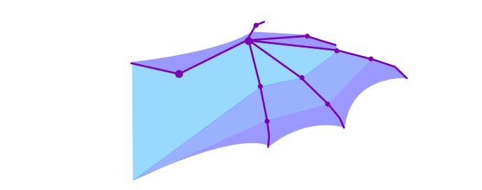 dragon membranes in wings