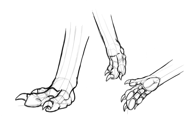 drawing dragon claws
