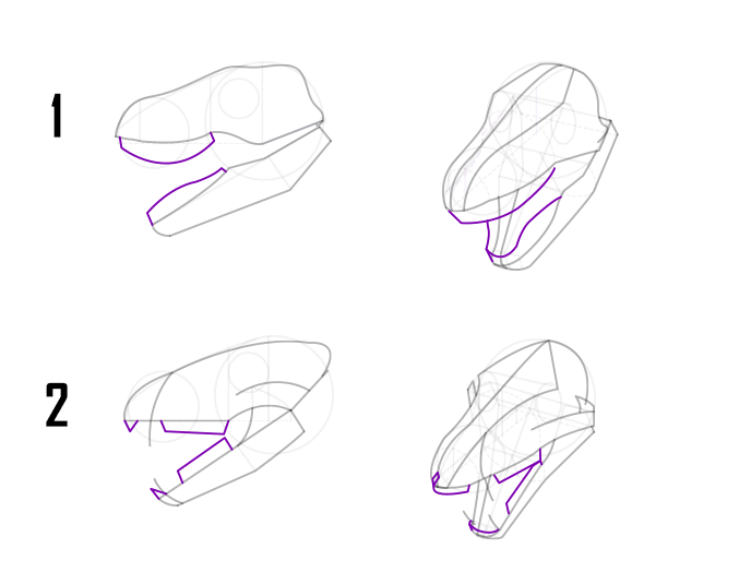 drawing your dragon skull step by step