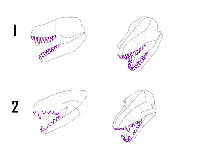 dragon head and teeth drawing