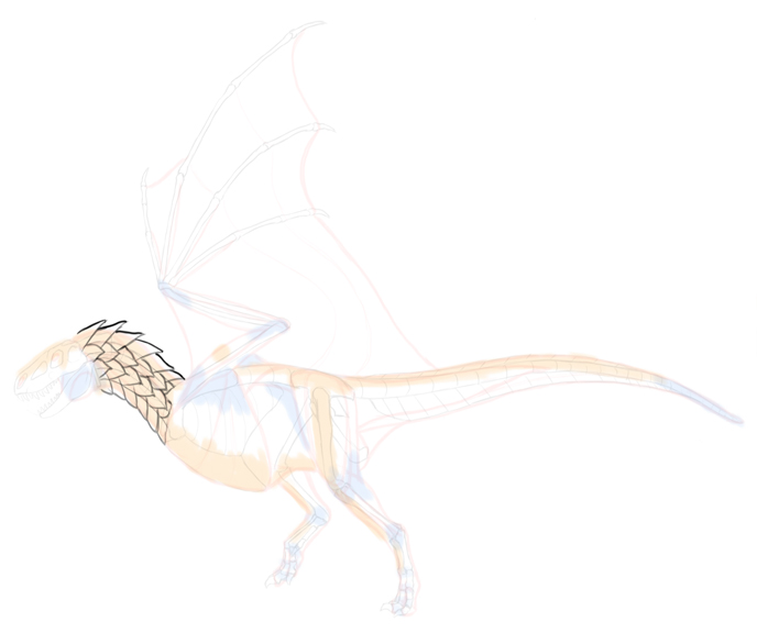 how-to-draw-dragons-5-10