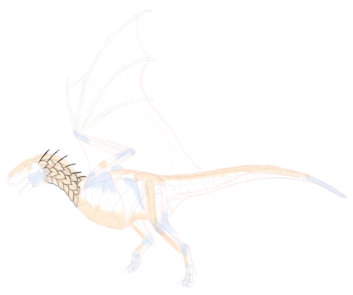 how-to-draw-dragons-5-9