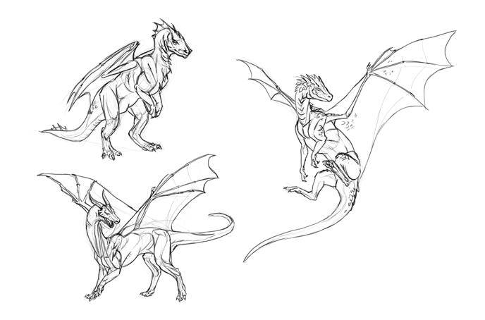 four legged dragon sketches