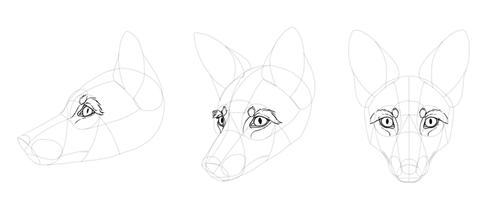 how-to-draw-foxes-head-18