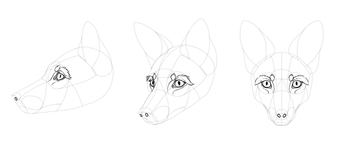 how-to-draw-foxes-head-19