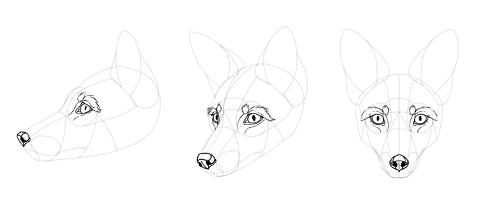 how-to-draw-foxes-head-22