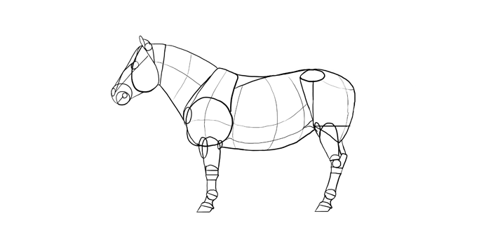 how-to-draw-horses-breeds-5-shetland-1