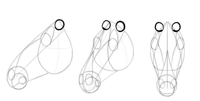 how-to-draw-horses-head-10