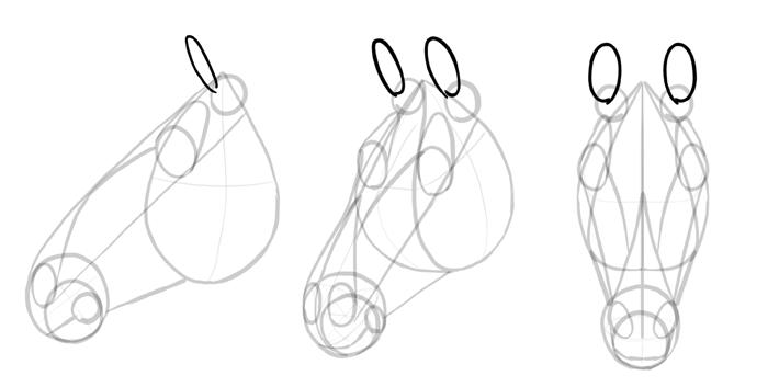 how-to-draw-horses-head-11