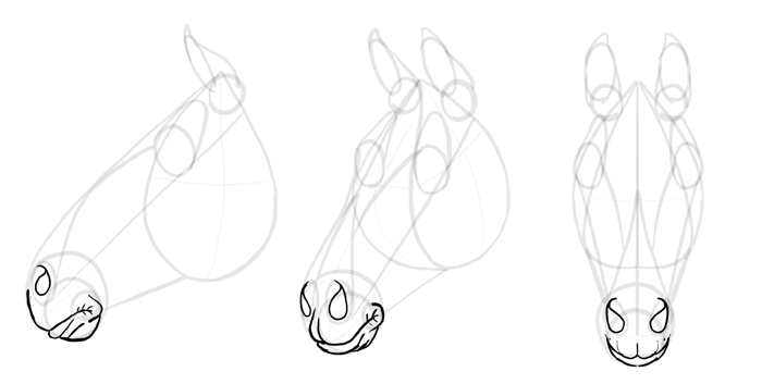 how-to-draw-horses-head-14