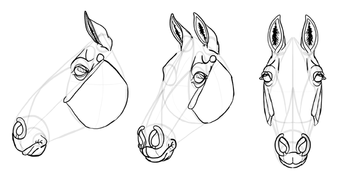 how-to-draw-horses-head-27
