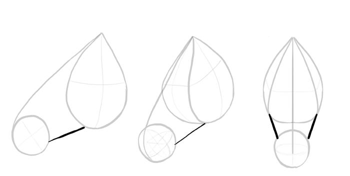 how-to-draw-horses-head-3