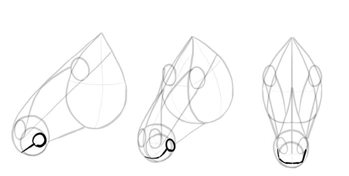 how-to-draw-horses-head-8