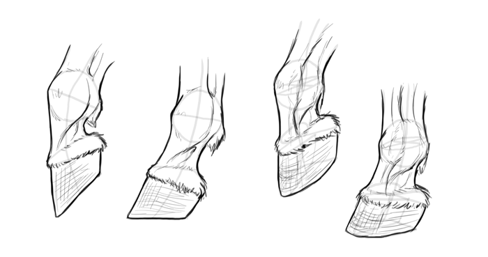 how-to-draw-horses-hooves-12