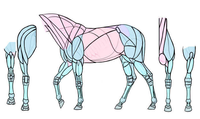 Don't worry if you can't remember the small parts in joints—you can simply draw the simplified joints you have learned in the previous tutorial