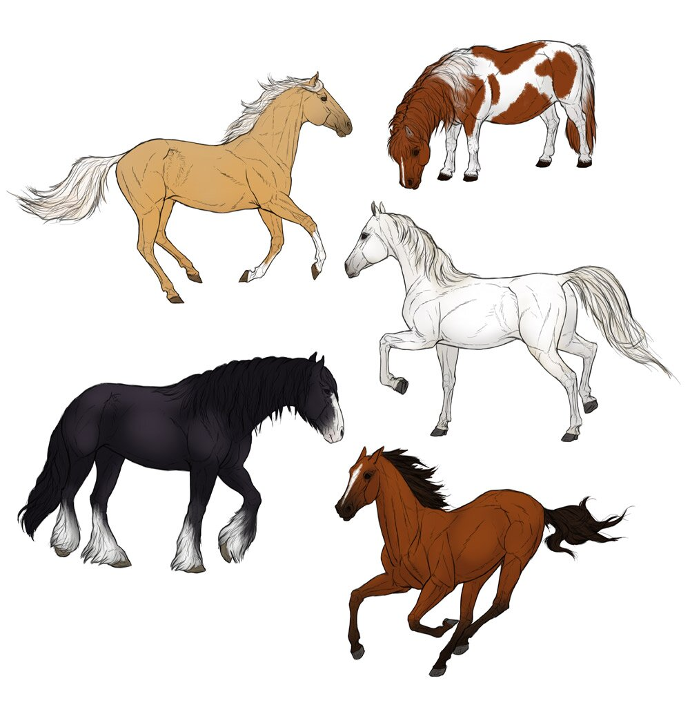 how-to-draw-horses-step-by-step-10