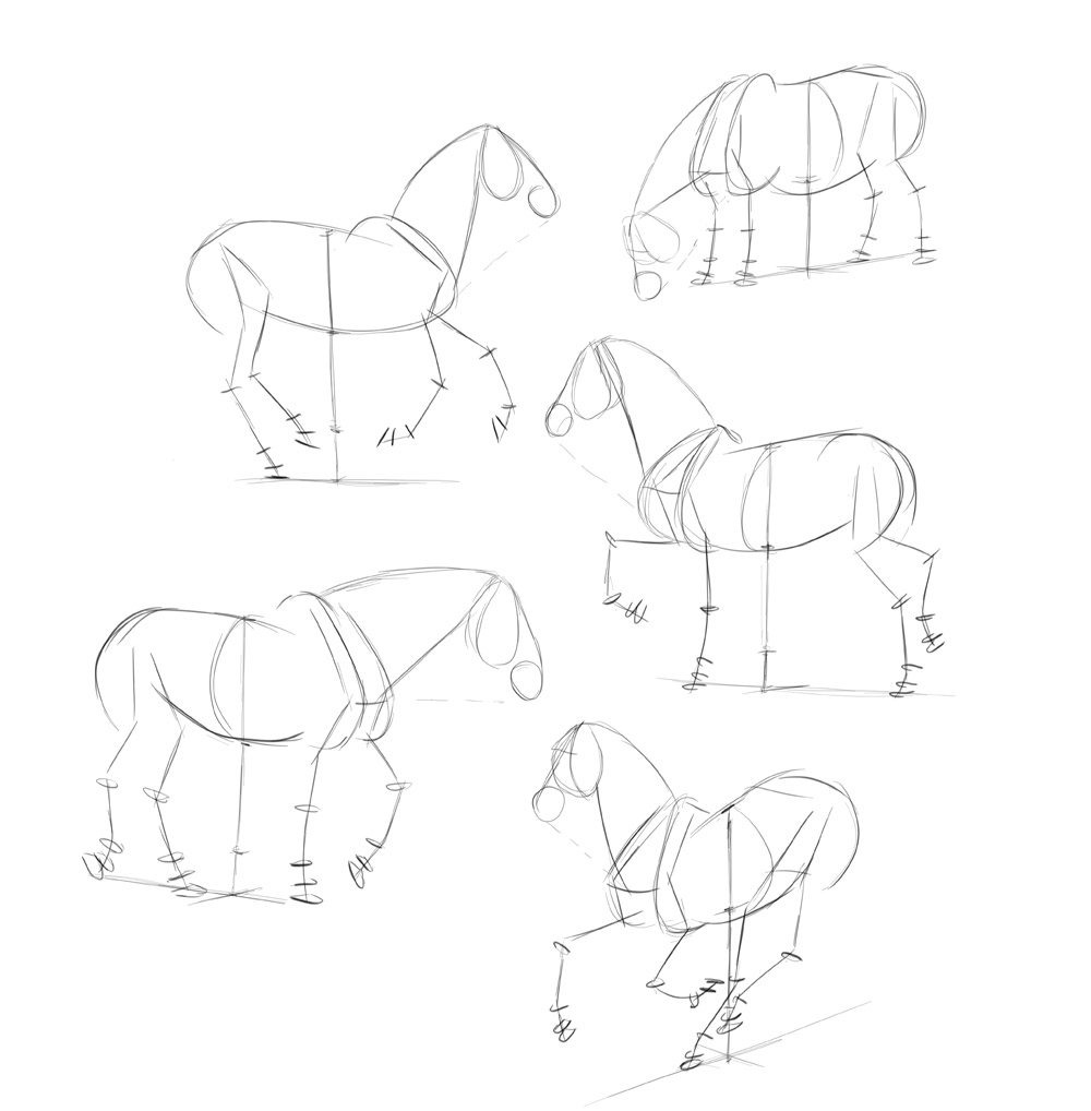 how-to-draw-horses-step-by-step-5