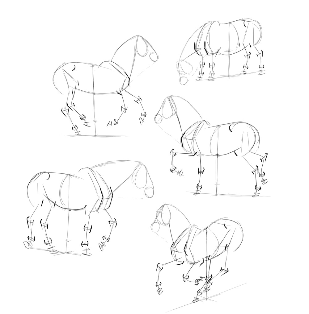 how-to-draw-horses-step-by-step-6