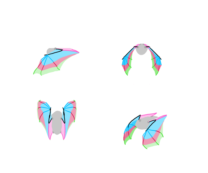 how-to-draw-wings-bat-fligh-frames-7