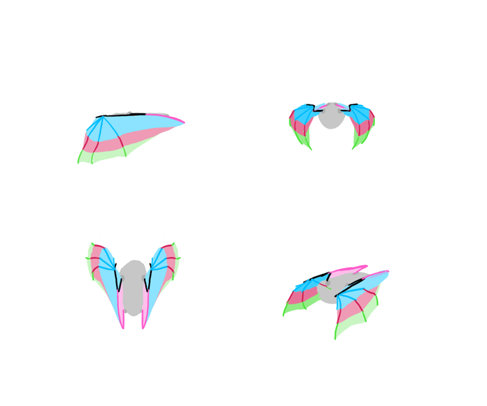 how-to-draw-wings-bat-fligh-frames-8