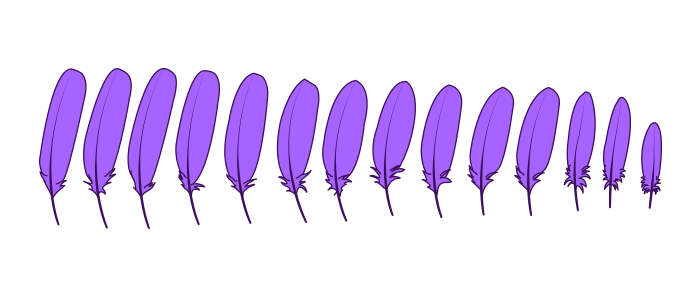 how-to-draw-wings-bird-feathers-2