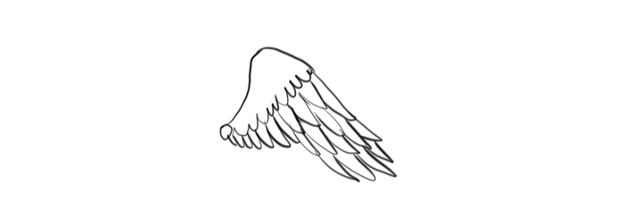 how-to-draw-wings-mistakes-bird-1