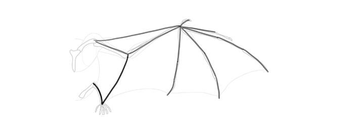 how-to-draw-wings-wing-bat-step-by-step-6