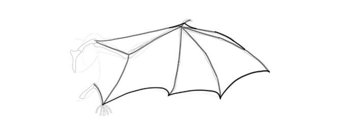how-to-draw-wings-wing-bat-step-by-step-7