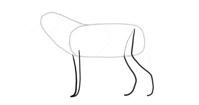 how-to-draw-wolves-drawing-process-3