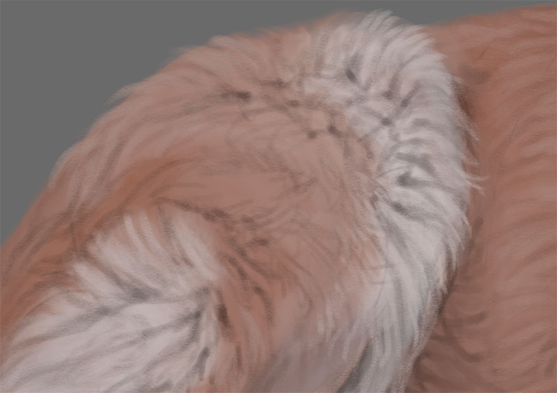 how to paint detailed fur