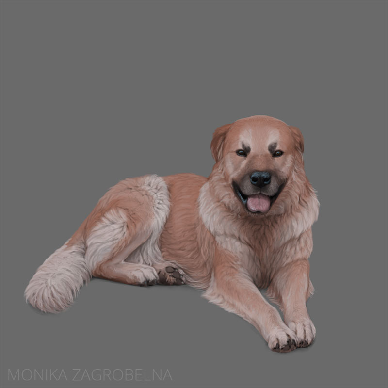 how to paint fur digitally