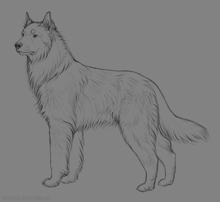 long fur line art