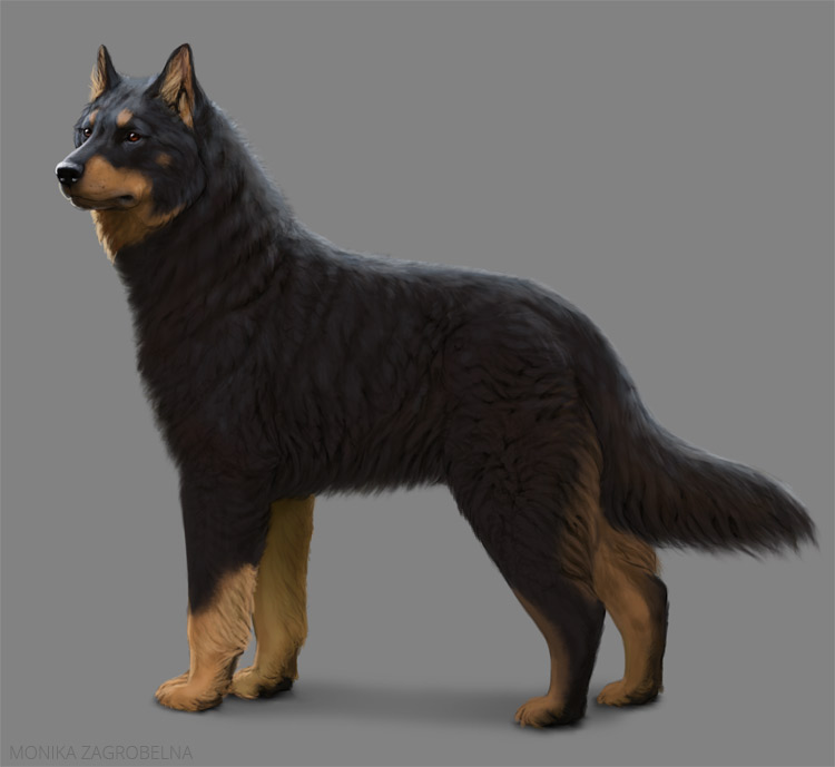 how to paint thick fur